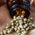 How to buy marijuana seeds online?